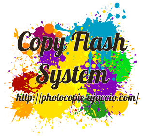 Copy Flash System