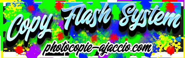 Copy Flash System